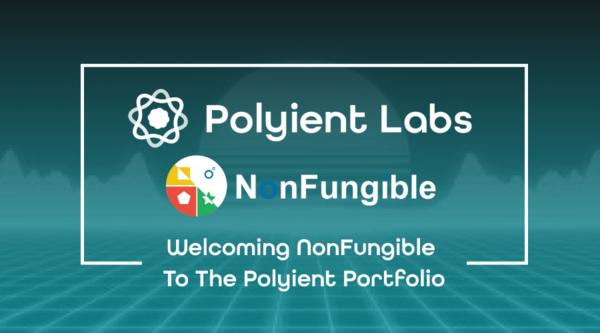Polyient Incubates NonFungible.com
